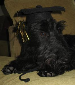 Indy the Graduate