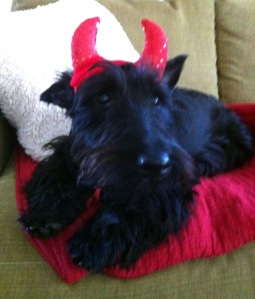 Lucy's first Halloween 2012