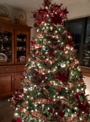 Scottie Tree 2015