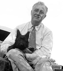 FDR and Fala