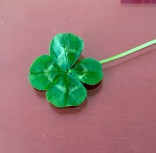 Indy and Luy's 4 leaf clover