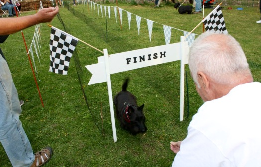 Lucy finishes Speedy Scottie Race