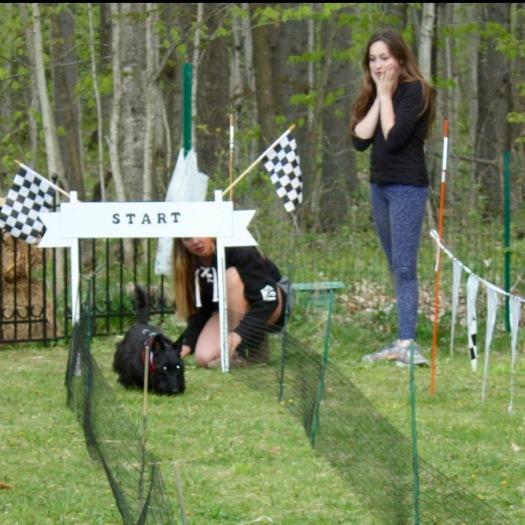 Speedy Scottie Race, Lucy