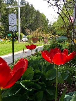 Spring in Door County
