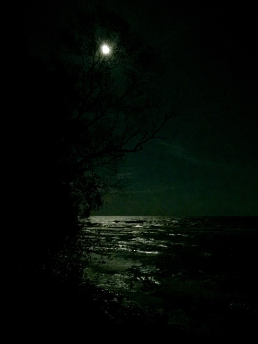 Full moon Lake Michigan