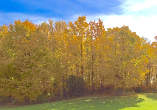 Door County fall