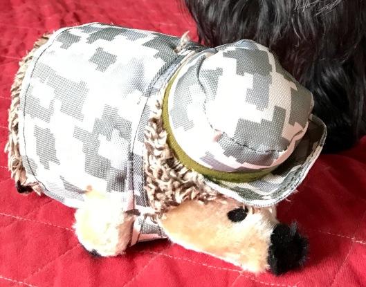 Soldiere hedgehog
