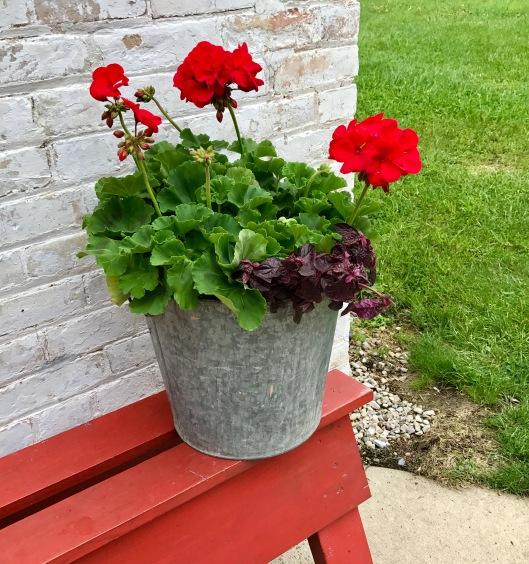 Door County Blooms